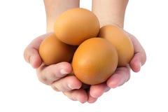 Eier an Hand Stockbild