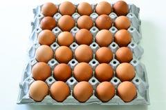 Eier im Behälter u. im x28; Rohes food& x29; stockbild