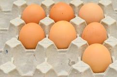 7 Eier im Eikasten Lizenzfreies Stockbild