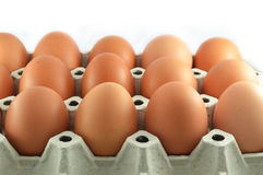Eier im Eikasten Lizenzfreies Stockfoto