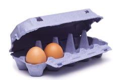 Eier im Eikasten Lizenzfreie Stockfotografie