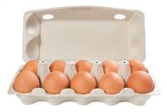 Eier im geöffneten Kartonpaket Stockfotos