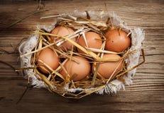 Eier im Heu Stockfoto