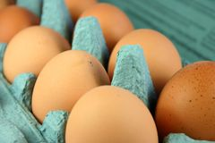 Eier im Karton lizenzfreie stockfotos