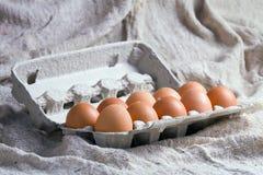 Eier im Karton Lizenzfreies Stockfoto