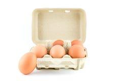 Eier im Kartonisolat auf Weiß mit Beschneidungspfad Stockbild