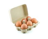 Eier im Kartonisolat auf Weiß mit Beschneidungspfad Stockfoto