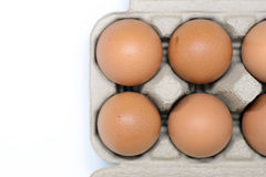 Eier im Kartonkasten Stockfoto