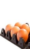 Eier im Kartonkasten auf weißem Hintergrund Stockbild