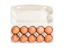 Eier im Kartonpaket Stockbild