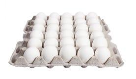 Eier im Kartonpaket auf weißem Hintergrund Stockfoto