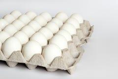 Eier im Kartonpaket auf weißem Hintergrund Stockbild