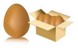 Eier im Kartonweißhintergrund Lizenzfreies Stockfoto