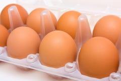 Eier im Kasten Stockfoto