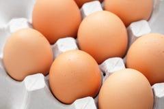 Eier im Kasten Lizenzfreie Stockbilder