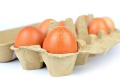 Eier im Kasten Stockbild