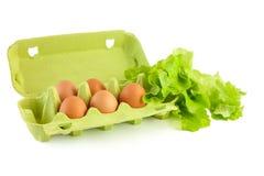 Eier im Kasten getrennt Lizenzfreie Stockfotografie