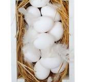 Eier im Kasten Getrennt auf weißem Hintergrund Stockfoto