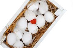 Eier im Kasten Getrennt auf weißem Hintergrund Lizenzfreies Stockbild