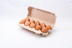 Eier im Korb Lizenzfreies Stockbild