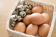 Eier im Korb Stockbild