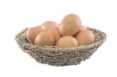 Eier im Korb getrennt Lizenzfreie Stockfotos