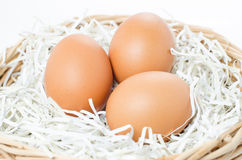 Eier im Korb lokalisiert auf weißem Hintergrund Stockfoto
