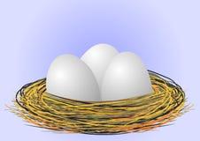 Eier im Nest Stockfotos