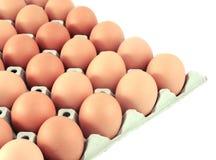 Eier im Paket Stockfoto