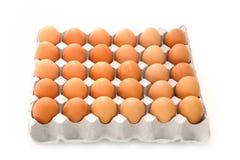 Eier im Papierbehälter lokalisiert auf Weiß Lizenzfreie Stockfotografie