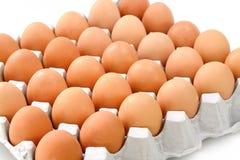 Eier im Papierbehälter lokalisiert auf Weiß Lizenzfreie Stockbilder