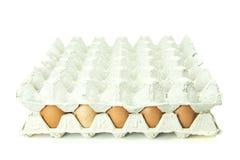 Eier im Papiertellersegment getrennt auf weißem Hintergrund Lizenzfreies Stockfoto