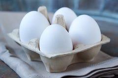 Eier im Pappkasten Stockbilder