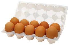 Eier im Plastikkasten Lizenzfreie Stockfotografie