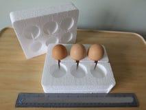 Eier im Polystyrenkasten für die Aufgabe stockfotos