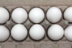 Eier im Satz Lizenzfreie Stockfotos