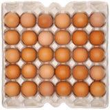 Eier im schützenden Verpacken Lizenzfreie Stockfotos