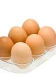 Eier im Tellersegment getrennt auf Weiß Stockfotos