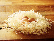 Eier im Vogelnest Stockfoto