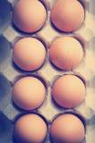Eier Instagram-Art Stockfotos