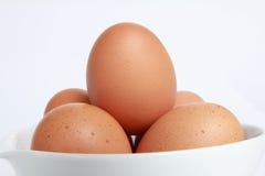 Eier ist auf Platte für das Kochen. Stockbilder