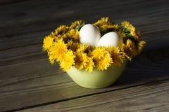 Eier liegen auf einem Kissen des Löwenzahns in der Küchenschüssel Lizenzfreies Stockbild