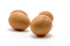 Eier lokalisieren auf weißem Hintergrund Stockfotografie