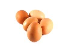 Eier lokalisiert Lizenzfreies Stockbild
