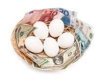 Eier mit Geld im Korb Stockfotografie