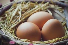Eier mit Hühnerfedern im Eierstock lizenzfreie stockbilder