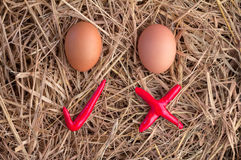 Eier mit Kontrollsymbol jpg Stockfotografie