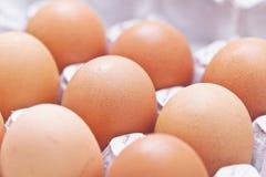 Eier ordnen in einem Kasten an Lizenzfreies Stockfoto