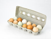 Eier in Pappkarton sortierten Farben Stockbilder