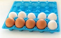 Eier sind weiß und im offenen blauen Plastikbehälter gelb Lizenzfreies Stockfoto